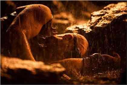 Riddick - Photo 3