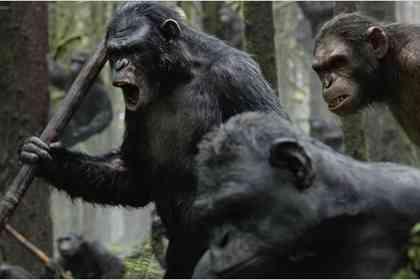 La Planète des singes : l'affrontement - Photo 2