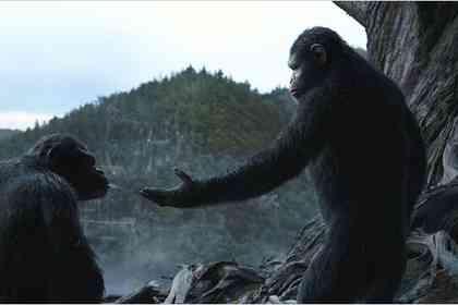 La Planète des singes : l'affrontement - Photo 4