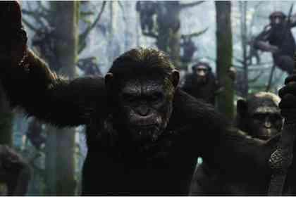 La Planète des singes : l'affrontement - Photo 5