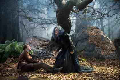 Promenons-Nous dans les Bois - Photo 2