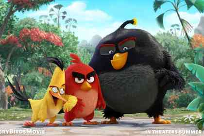 Angry birds - Photo 1
