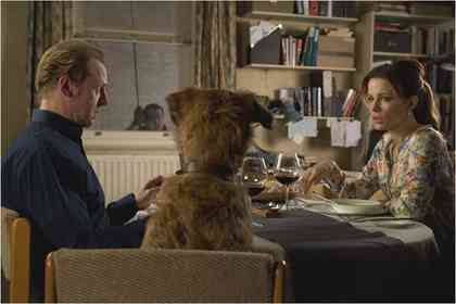 Absolutely anything - Photo 7