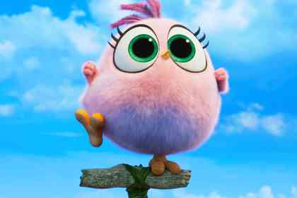 Angry Birds : Copains Comme Cochons - Photo 1