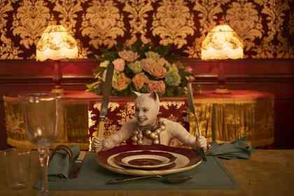 Cats - Photo 5