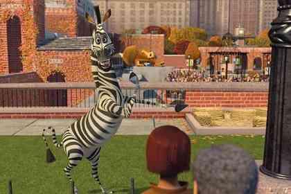 Madagascar - Photo 9