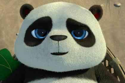 Opération Panda - Photo 3