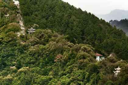 Séjour dans les Monts Fuchun - Photo 5