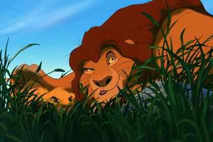 Le Roi Lion - Photo 14
