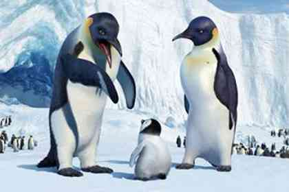 Happy feet - Photo 2