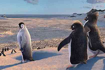 Happy feet - Photo 3