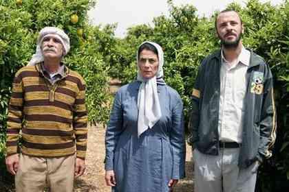 Les Citronniers - Photo 2