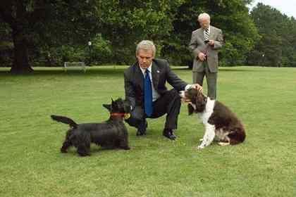 W, The Story of George Bush - Photo 3