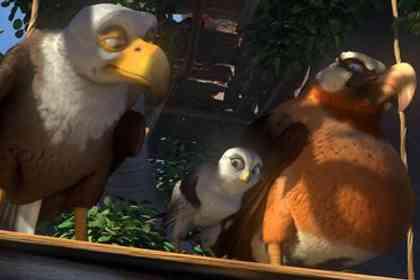 Drôles d'Oiseaux - Photo 1