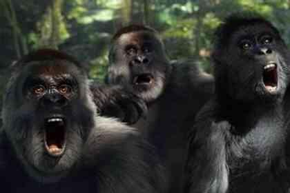 Tarzan - Foto 3