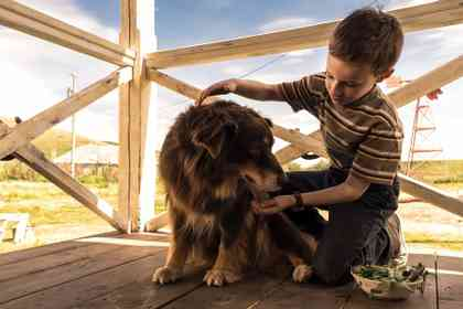 The Young and Prodigious Spivet - Foto 6