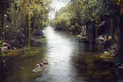 The Jungle Book - Foto 3