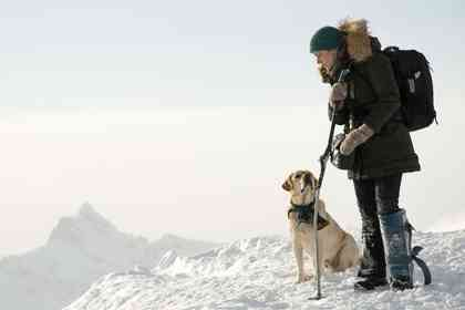 The Mountain Between Us - Foto 6