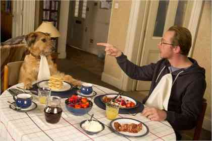Absolutely Anything - Foto 2