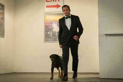 Show Dogs - Foto 6