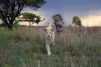 Mia et le Lion Blanc - Foto 4