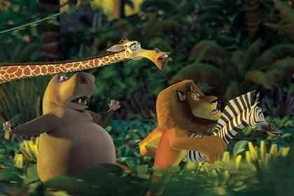 Madagascar - Foto 11
