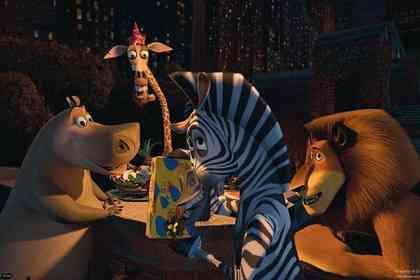 Madagascar - Foto 7