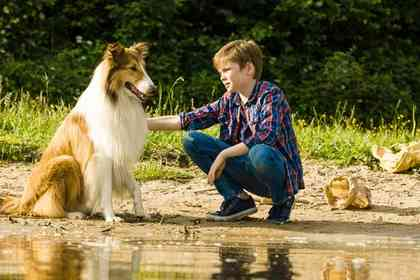 Lassie - Foto 3