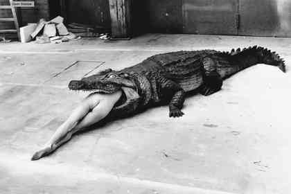 Helmut Newton : The Bad and The Beautiful - Foto 5