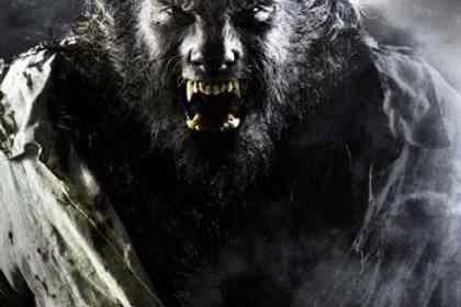 The Wolfman - Foto 1