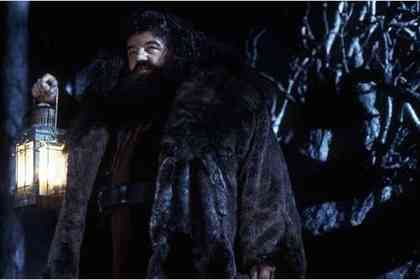 Harry Potter and the Sorcerer's Stone - Foto 16