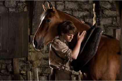 War Horse - Foto 8