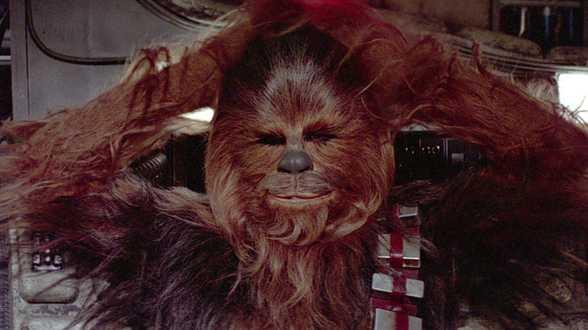 Mort de Peter Mayhew, le Chewbacca de Star Wars, à l'âge de 74 ans - Actu