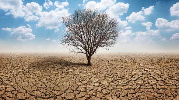 10 documentaires pour mieux comprendre le réchauffement climatique - Actu
