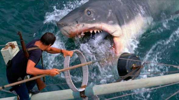 Ce soir à la TV : Les Dents de la Mer - Actu