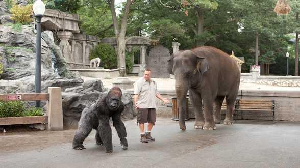 Ce soir à la TV : The Zookeeper - Actu