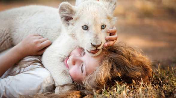 Ce soir à la TV : Mia et le Lion Blanc - Actu
