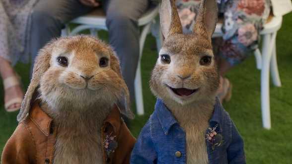 Pierre Lapin 2 : Panique en Ville, l'adorable lapin-voyou est de retour. - Actu