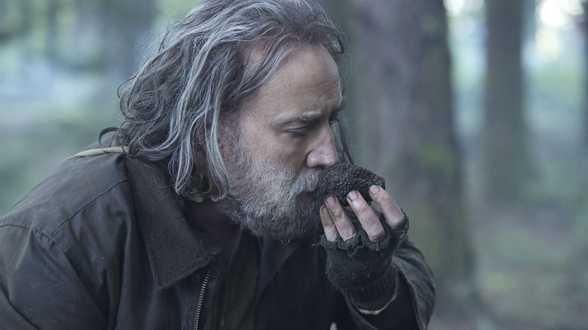 Pig, avec Nicolas Cage, présenté au festival de Deauville - Actu