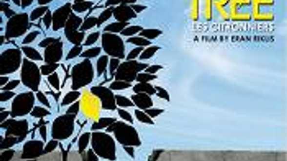 Lemon Tree - Chronique