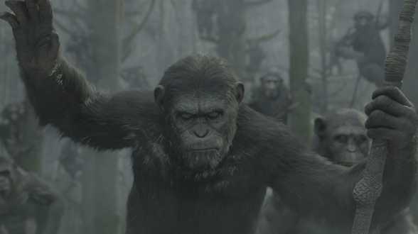 Matt Reeves réalisera également la suite de La Planète des singes : l'affrontement - Actu