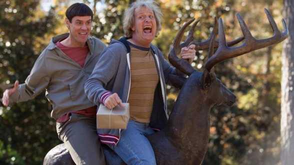 Jim Carrey et Jeff Daniels sur la première photo de Dumb and Dumber 2 - Actu