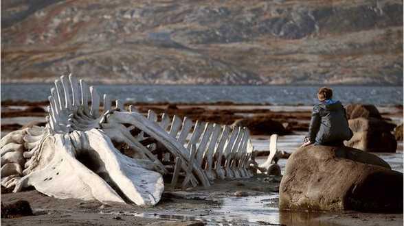 Leviathan: het zatte monster - Bespreking