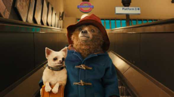 Paddington, Pinguins of Madagascar, My Old Lady, ... Uw Cinereview ! - Actueel
