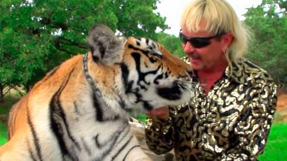 Fictiereeks over 'Tiger King' op komst: Maak geen gebruik van echte tijgers - Actueel