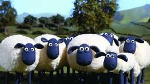 'Shaun the Sheep': een nieuwe held voor de Aardman studios! - Actueel