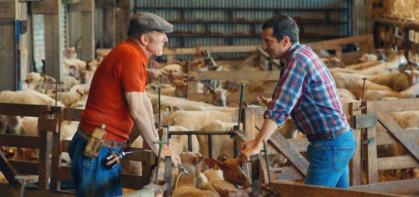 Quand Deneuve, Canet ou Houellebecq portent la voix des agriculteurs