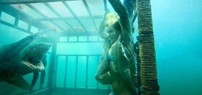Ce soir à TV : Shark 3D