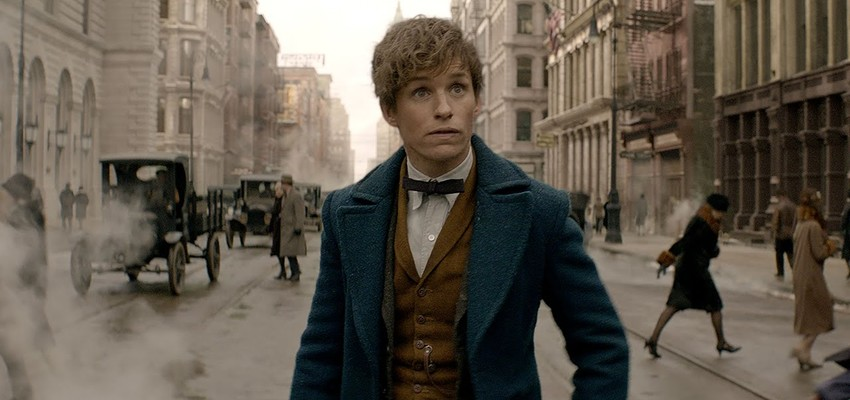 Vanavond op TV: Fantastic Beasts and Where to Find Them
